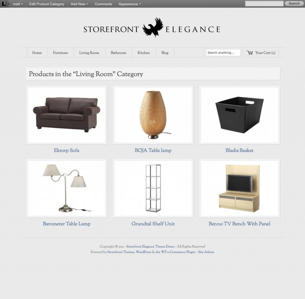 how to build an e-commerce store pdf