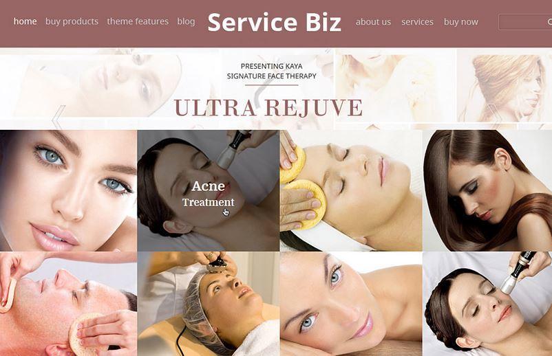 service biz
