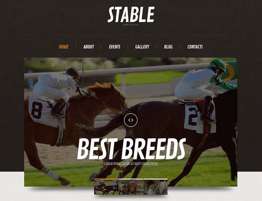5 WordPress Themes for Horse Sites