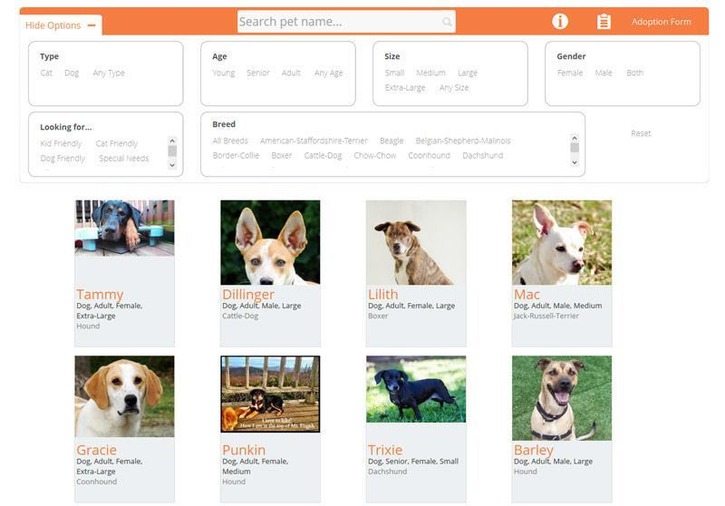 petfinder search