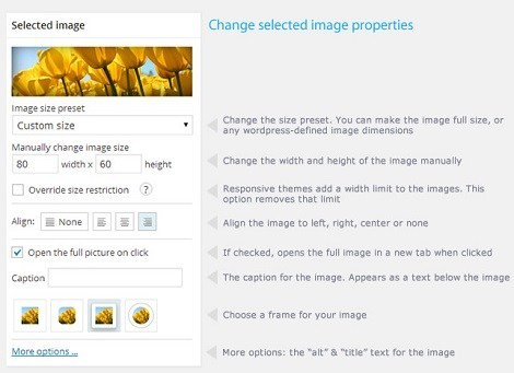 4 Plugins To Resize Images in WordPress