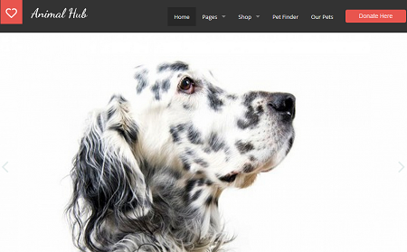 5 WordPress Themes/Plugins for Petfinder & Pet Adoption Sites