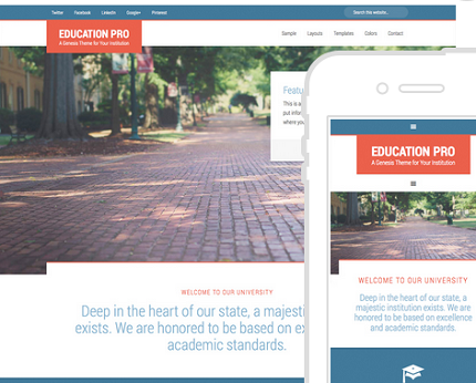 16 Attractive WordPress Themes for Schools