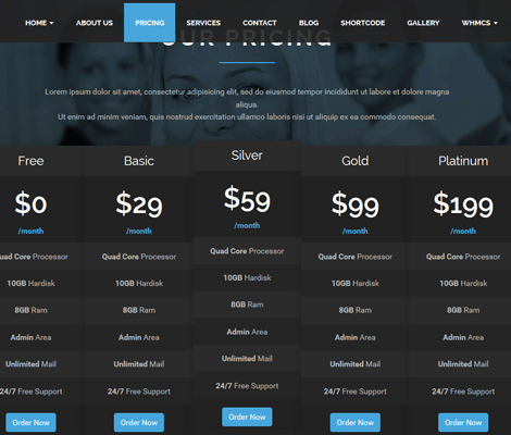 Onehost One Page Hosting Theme