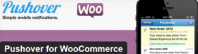 Make WooCommerce Mobile Friendly: 4 Plugins