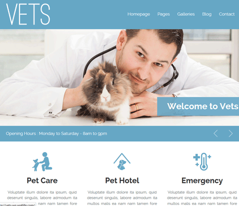 VETS: WordPress Theme for Pet Clinics