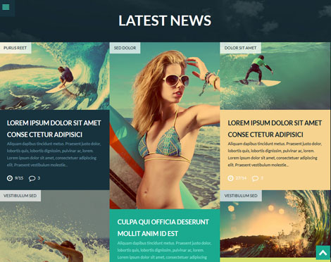 Extreme Sports Club Theme for Surfing Sites