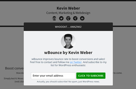 wBounce: Popup Exit Plugin for WordPress