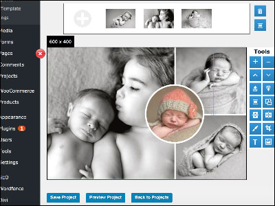 digiwidgets-image-editor