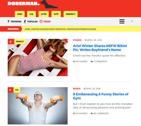Doberman: WordPress Theme for Viral Magazines