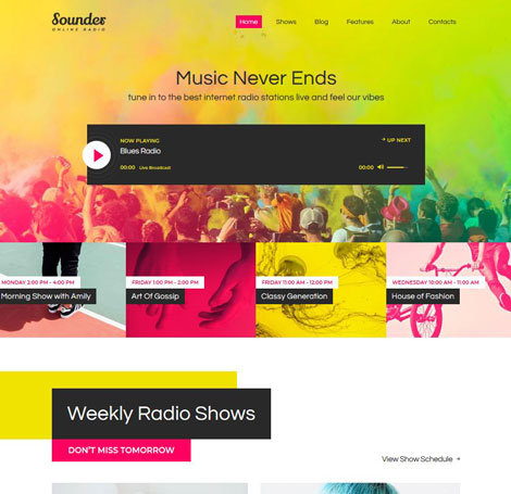 15+ Attractive Podcasting WordPress Themes - WP Solver
