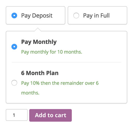 3 Must See WooCommerce Down Payment Plugins